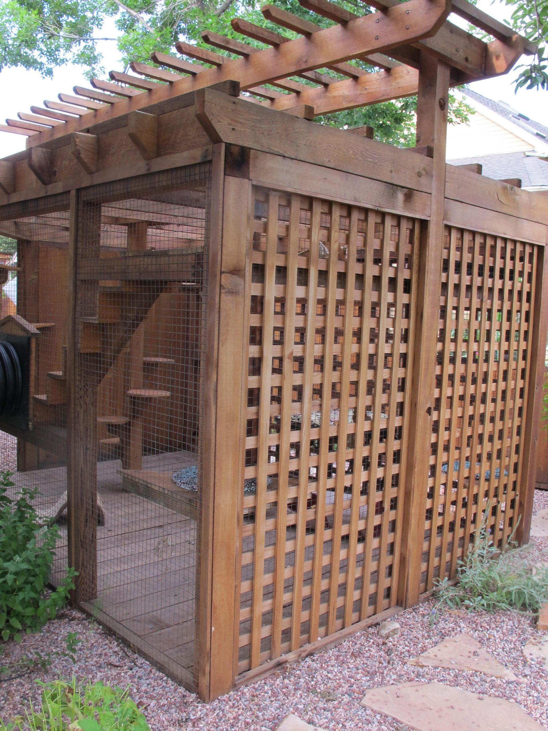 Catio Spaces, Cat Enclosures, Cat Runs, Catios